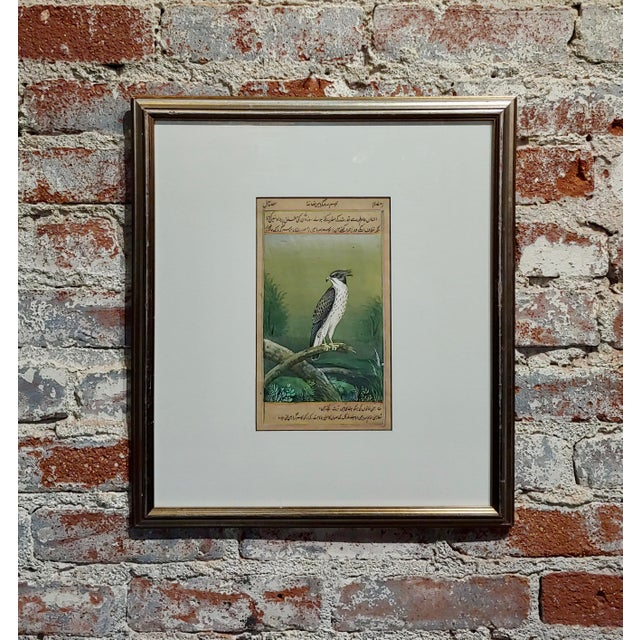 Green 18th Century Antique Middle Eastern or Persian Falcon Painting W/Calligraphy For Sale - Image 8 of 8