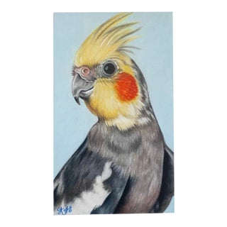 """""""Rocky the Cocktail"""" Painting For Sale"""