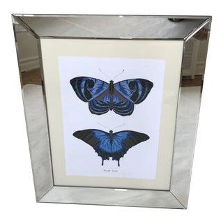 Original Art. Work Butterfly - Papillon For Sale