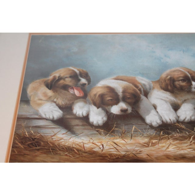 Traditional Puppies in the Hay Framed, 19th Century Print For Sale - Image 3 of 8