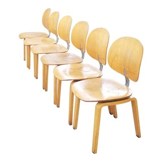 1960s Giancarlo Piretti Xylon for Ki Bent Plywood Dining Chairs - Set of 4 For Sale