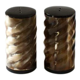 Faux Horn Twisted Salt and Pepper Set For Sale