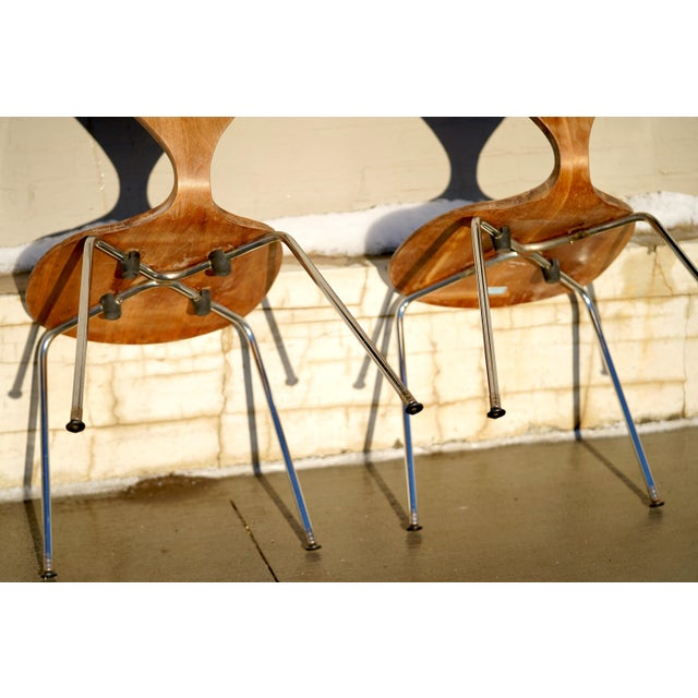 Bentwood 1950s Vintage Norman Cherner Designed Plycraft Chairs on Chrome Bases- 2 Available. For Sale - Image 7 of 9