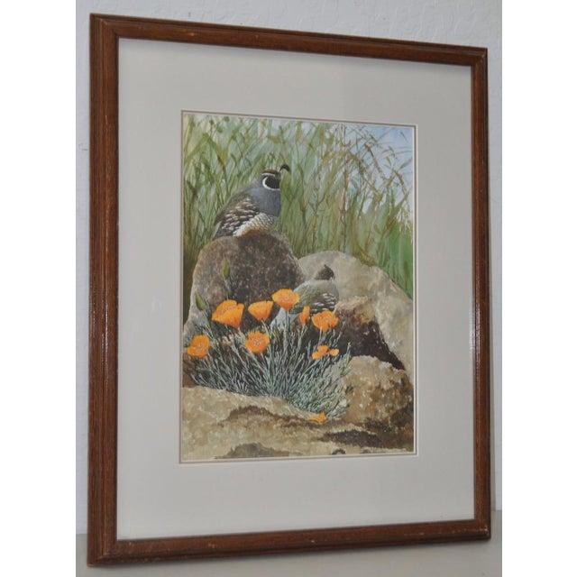 Gerald Petitt California Quail & Poppies Watercolor c.1970s - Image 2 of 11
