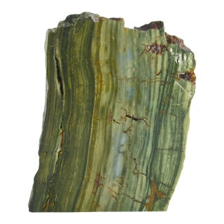 Aqua Green Petrified Bog Wood Wedge For Sale