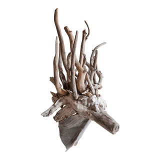 Driftwood Fantasy Animal Head Sculpture For Sale