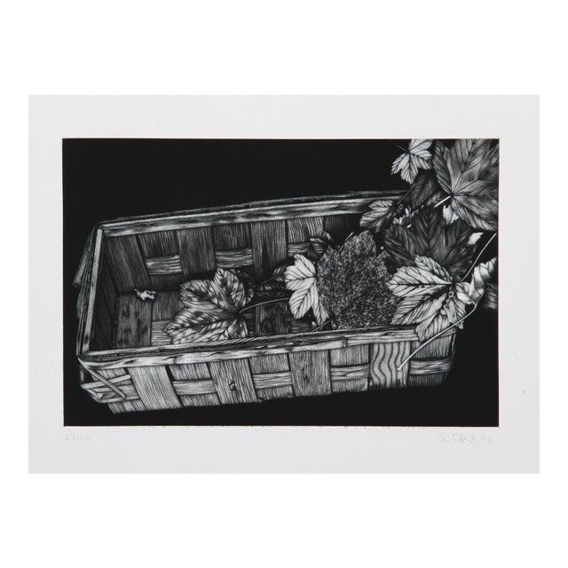 Gerde Ebert, Basket of Leaves, Mezzotint For Sale