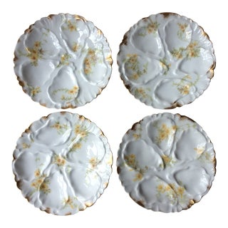 French Oyster Plates - Set of 4 For Sale