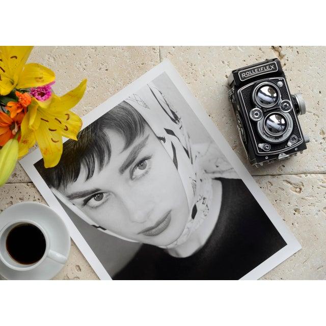 Mid-Century Modern Audrey Hepburn 1953 For Sale - Image 3 of 5