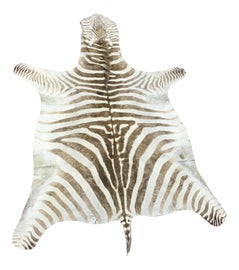Image of Zebra Rugs