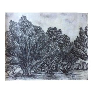 Vintage Charcoal Drawing Swirly Trees at Lake Merritt, Oakland