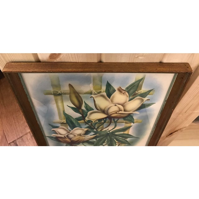 Mid Century Lotus Botanical Print by Ted Mundorff For Sale - Image 9 of 11