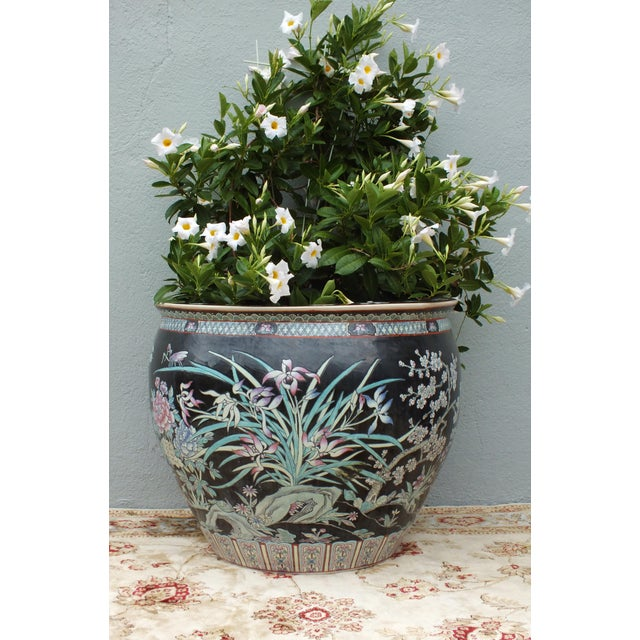 Asian Qianlong Chinese Famille Noir Fish Bowl Planter For Sale - Image 3 of 11