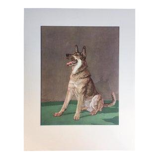 Vintage Diana Thorne German Shepherd Dog Print