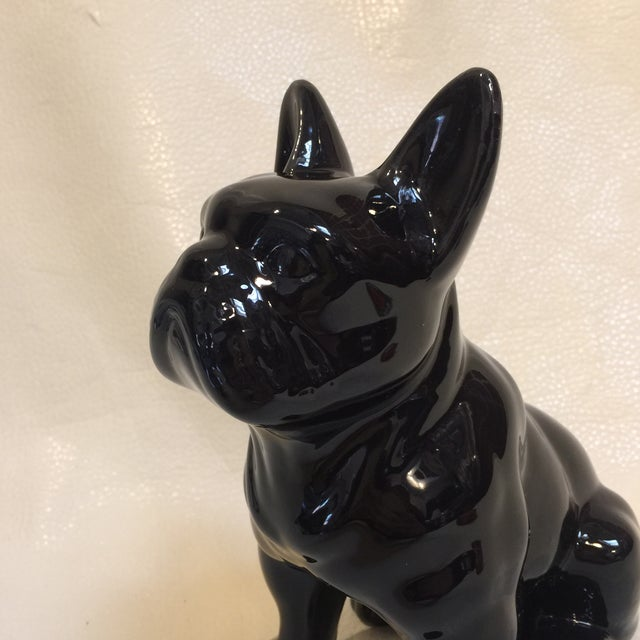 Americana Perfect Pooch For Sale - Image 3 of 7