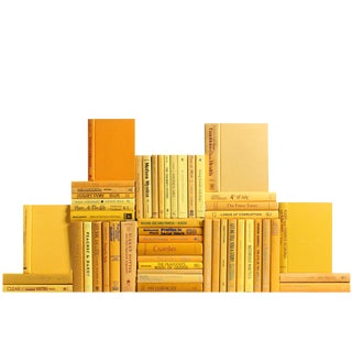 Modern Daffodil Book Wall : Set of Fifty Decorative Books For Sale