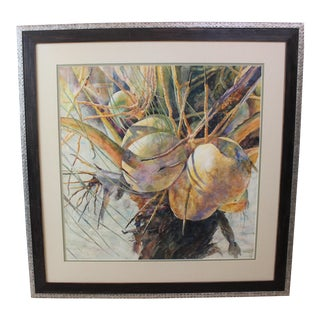 "Vintage Barbara Shipman Watercolor Painting ""Lots of Coconuts"" For Sale"