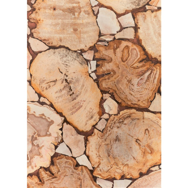 2010s Hexagon Petrified Wood Stool, Natural Light For Sale - Image 5 of 6
