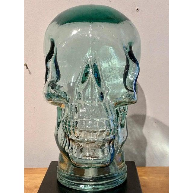 Transparent Modern Glass Skull Lamp For Sale - Image 8 of 12