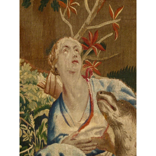18th Century 1700s Beauvais Tapestry Wall Hanging For Sale - Image 5 of 13