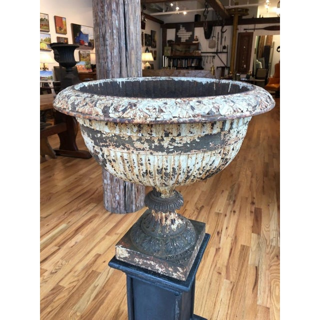 Lovely JW Fiske NY cast iron garden urn. Wonderful patina with traces of old paint. A self watering classic tazza form,...