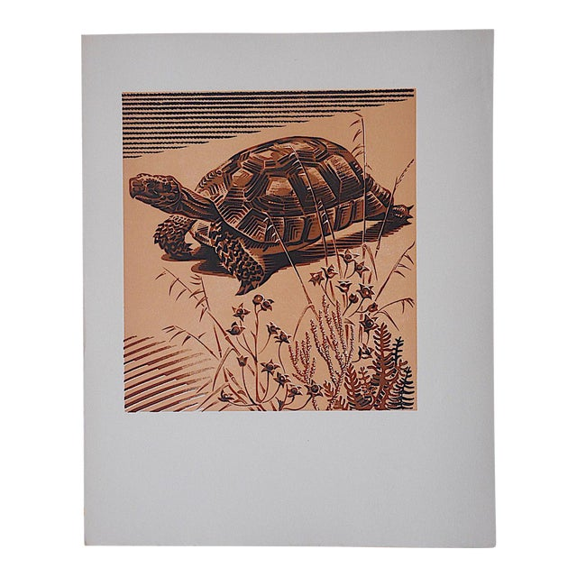Vintage Ltd. Ed Woodcuts by J. Kefalleno-Greece-Tortoise - Image 1 of 4