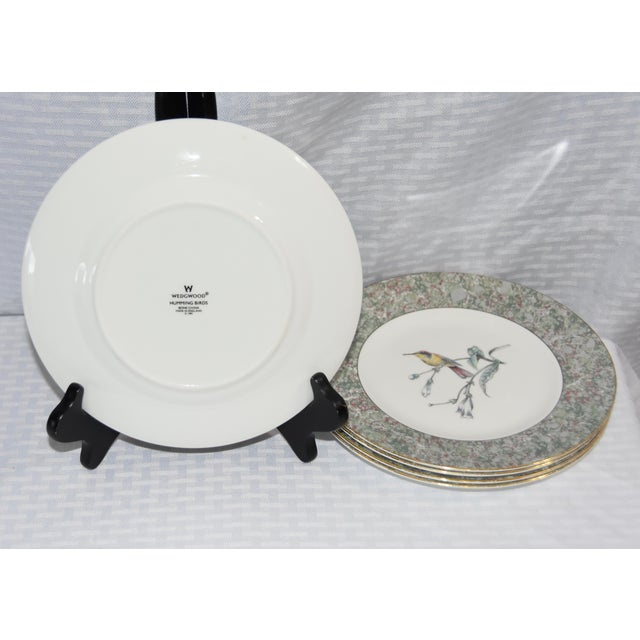 1990 Humming Birds by Wedgwood Salad/Dessert Plates - Set of 5 For Sale In Palm Springs - Image 6 of 7