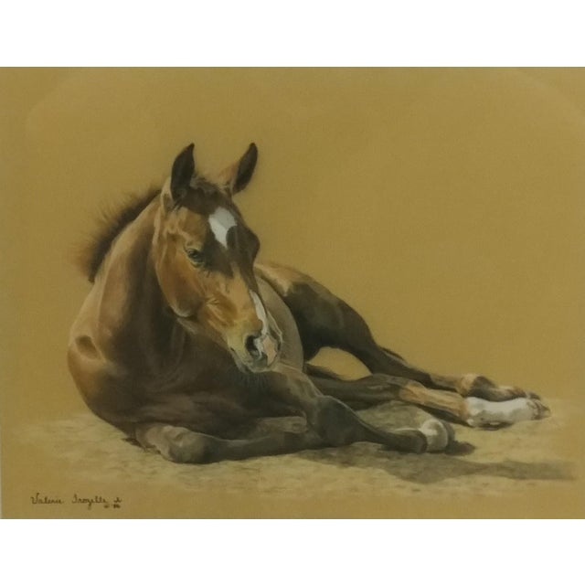 Valery Trozelle - young Horse Resting -Beautiful Painting - Image 1 of 6