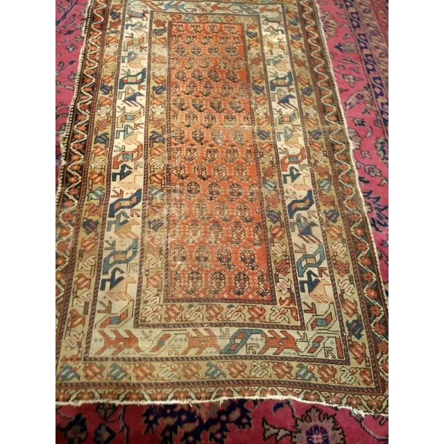19th Century Kazak Rug 3′1″ × 5′6″ For Sale - Image 11 of 13