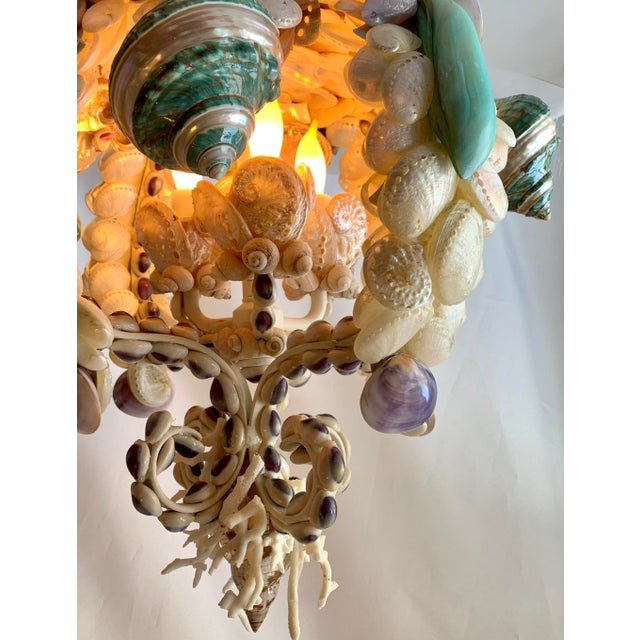 Contemporary Crown of Shells Chandelier For Sale - Image 3 of 12