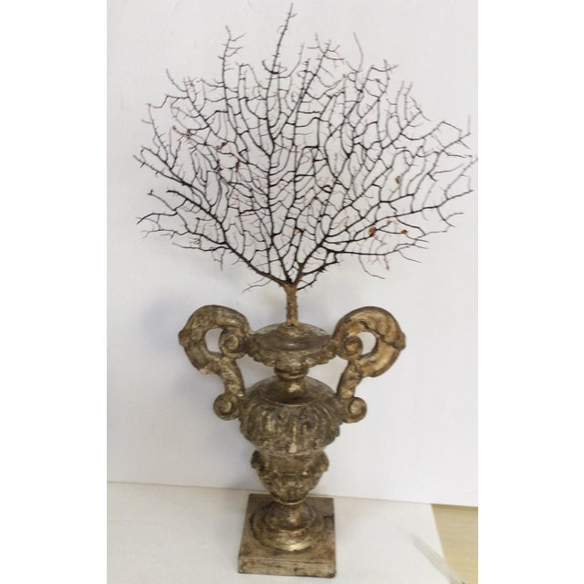 Antique Italian Silvered Wood Urn With Sea Fan For Sale - Image 4 of 7