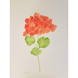 "Botanical Original Watercolor "" Orange Geranium 1""by Contemporary Artist Christine Frisbee 9 X 12 For Sale"