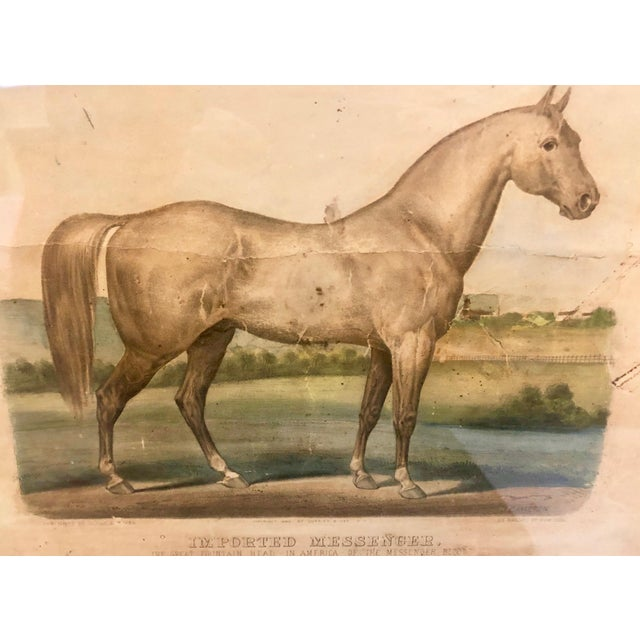 """Late 19th Century 19th Century Antique Currier & Ives """"Imported Messenger"""" Equestrian Lithograph Print For Sale - Image 5 of 11"""