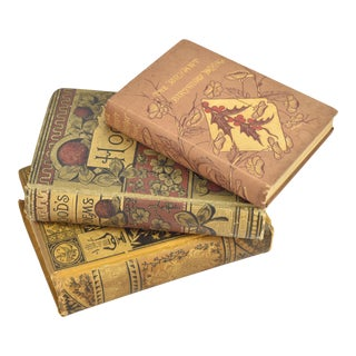 Decorative Antique Books - Set of 3