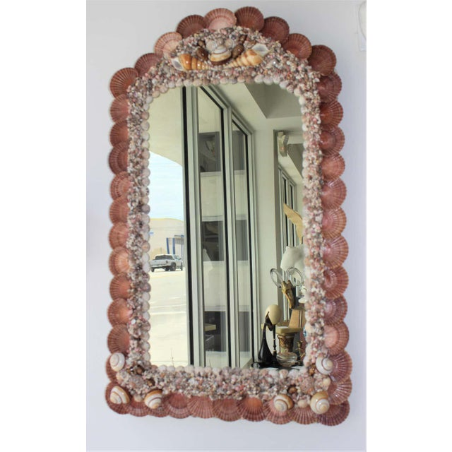 Seashell Encrusted Mirror by Snob Galeries For Sale In West Palm - Image 6 of 13