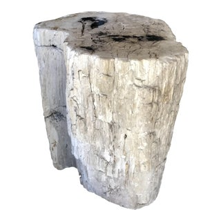 Petrified Wood Table/Stool For Sale