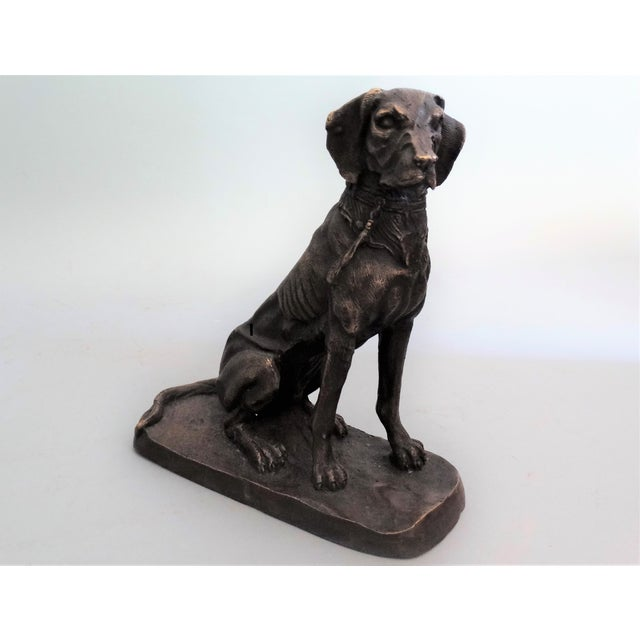 Early 20th-Century French bronze sporting dog. It has excellent detail to the muscular anatomy, as well as the face and coat.