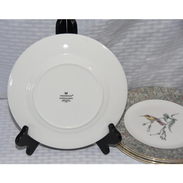 1990s 1990 Humming Birds by Wedgwood Salad/Dessert Plates - Set of 5 For Sale - Image 5 of 7