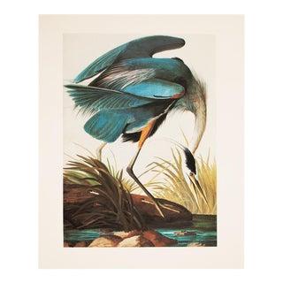 Great Blue Heron by John James Audubon, 1966 Print For Sale