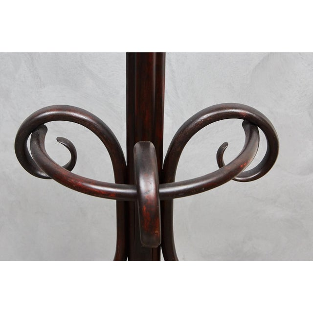 English Bentwood Hat Rack For Sale In Los Angeles - Image 6 of 6