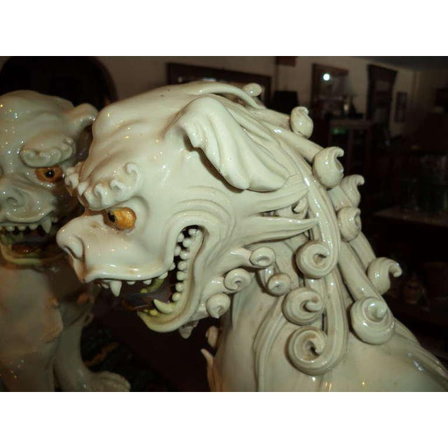 White 19th Century Porcelain Foo Dogs - a Pair For Sale - Image 8 of 11