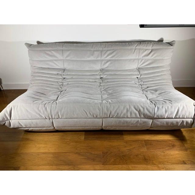 Fabric Modern Ligne Roset Alcantara Pearl Togo Sofa For Sale - Image 7 of 7