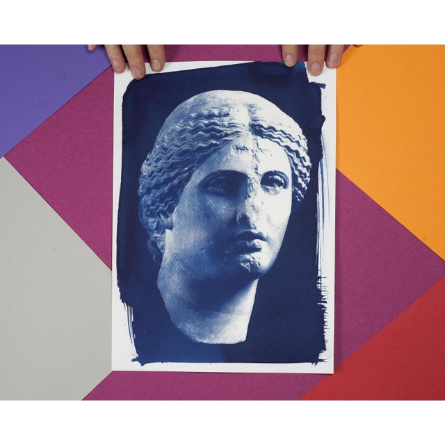 Roman Woman Bust Sculpture, Cyanotype, A4 size (Limited Edition) For Sale - Image 4 of 4