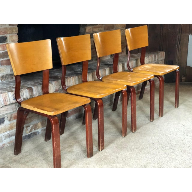 Mid 20th Century Thonet Bentwood Chairs - Set of 4 For Sale - Image 5 of 8