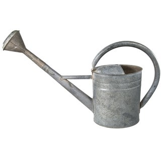 European Bat Watering Can