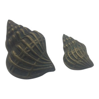 Brass Shell Paperweights - a Pair