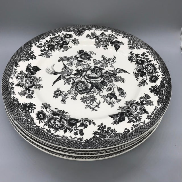 Royal Stafford Asiatic Pheasant Black Chop Plates - Set of 5 For Sale - Image 10 of 13