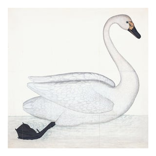 Bewick's Swan Plate 1. By Olof Rudbeck For Sale