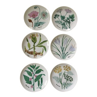 1980s Americana Horchow Botanical Herb, Seed Series Salad or Dessert Plates - Set of 6 For Sale