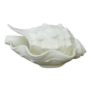 Erphila Porcelain Conch For Sale